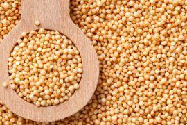 Amaranto, el cereal de los astronautas